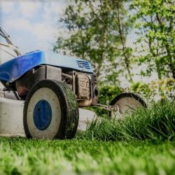 Topless Lawnmowing & Property Maintenance