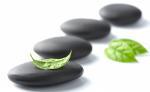 RAO Massage Therapies